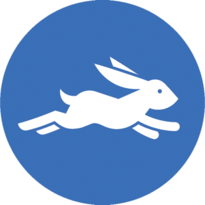 hare represents concept of speed on the web