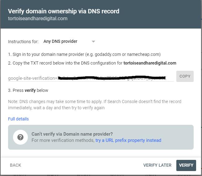 dns txt record verification in google search console